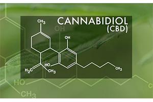 Natures Best CBD Ingredients